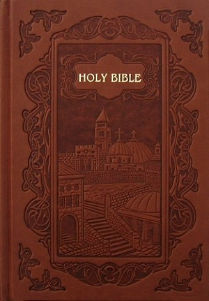NASB New Illustrated Bible of Jerusalem - Brown Leathertex/Hardcover