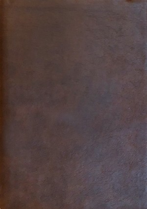 NASB 2020 Large Print Ultrathin Reference Bible - Standard Size - Brown, Leathertex